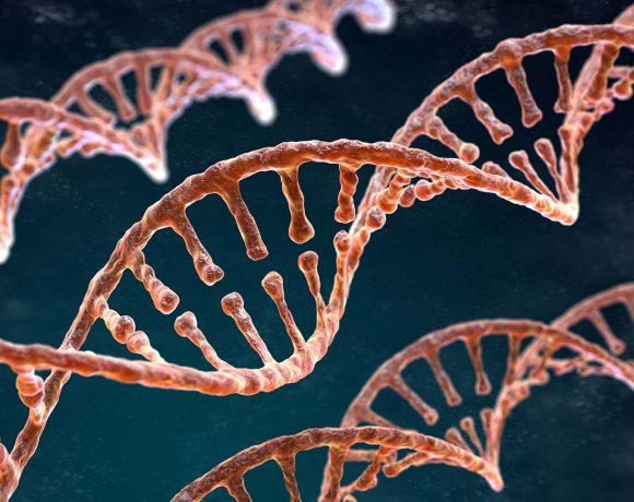 İlaç Etken maddesi Ftalosiyanin Bileşiklerinin Sentezi, Karakterizasyonu ve DNA Bağlanma Özelliklerinin Farklı Yöntemler ile İncelenmesi
