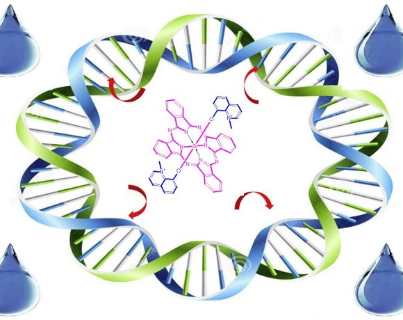 Synthesis, Characterization and Investigation of DNA Binding Properties of Biologically Active Quinoline Substituted Silicon (IV) Phthalocyanine Compounds